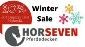 Winter Sale Horse Seven
